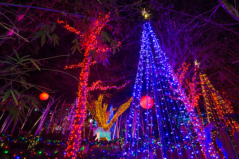 whats happening holidays in houston - Christmas In Houston 2015